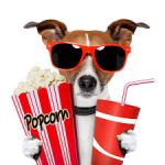 movie-dog